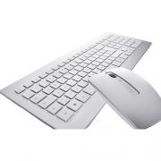 Cherry Desktop DW 8000 Wireless silber/weiss